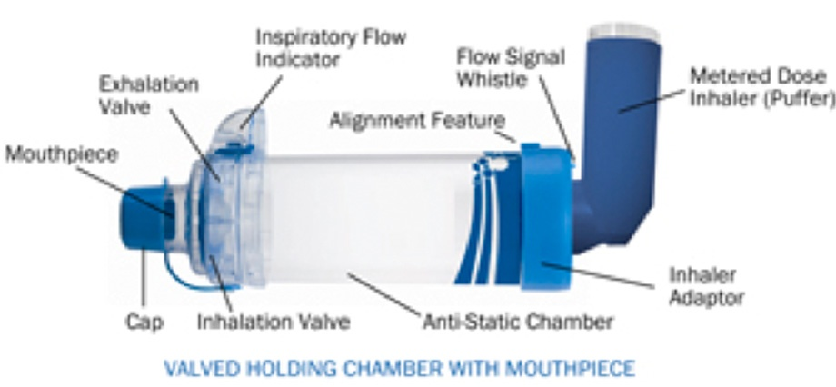 How To Use Your Inhaler The Lung Association