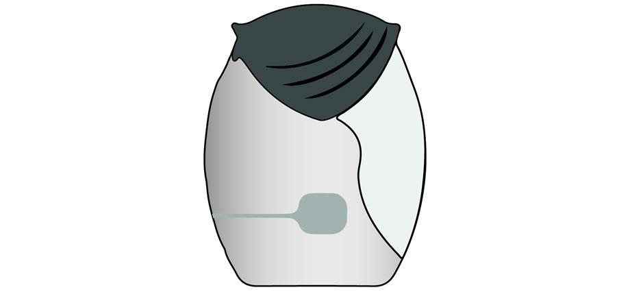 Ellipta Image