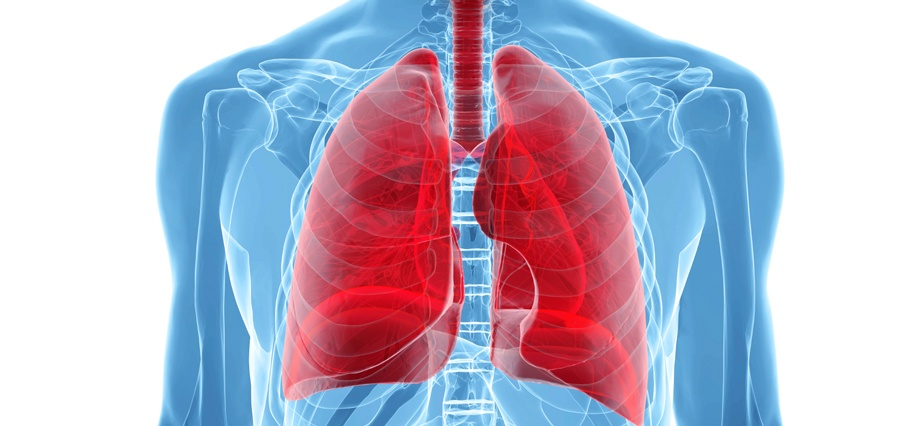 Lung Health | the lung association